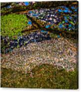 Blue Rock Canvas Print