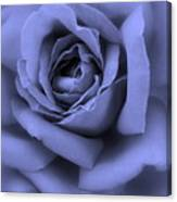 Blue Rose Abstract Canvas Print