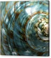 Blue Seashell Canvas Print