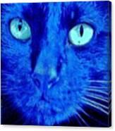 Blue Shadows Canvas Print