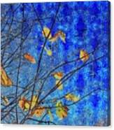 Blue Skies And Last Leaves Of Fall Canvas Print