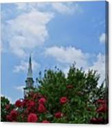Blue Sky And Roses Canvas Print