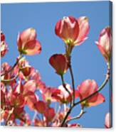 Blue Sky Art Prints Pink Dogwood Flowers 16 Dogwood Tree Art Prints Baslee Troutman Canvas Print