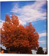 Blue Sky Autumn Canvas Print