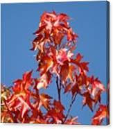 Blue Sky Fall Tree Leaves Landscape Art Prints Baslee Troutman Canvas Print