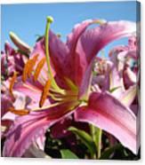 Blue Sky Floral Landscape Pink Lilies Art Prints Canvas Baslee Troutman Canvas Print