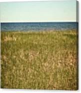 Blue Sky Green Grass Canvas Print