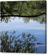 Blue Sky Reflection Canvas Print