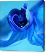 Blue Solitude Canvas Print