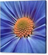 Blue Splendor Canvas Print