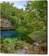 Blue Springs II Canvas Print