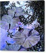 Blue Stillness Canvas Print