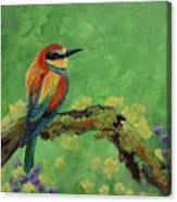 Blue Tailed Bee Eater Canvas Print