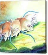 Blue Tailed Society Canvas Print