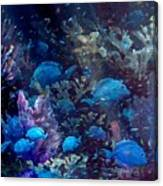 Blue Tang Sea Fan   Canvas Print