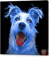 Blue Terrier Mix 2989 - Bb Canvas Print