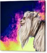 Blue The Goat In Fog Canvas Print