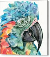Blue-throated Macaw Canvas Print