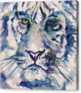 Blue Tiger Canvas Print