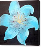 Blue Tiger Lily Canvas Print