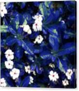 Blue White I Canvas Print