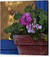 Blue Window With Geraniums Canvas Print