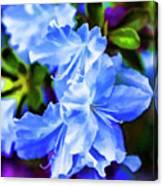 Blue Wonder Canvas Print