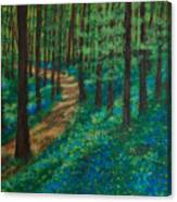 Bluebell Forest Canvas Print