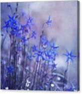 Bluebell Heaven Canvas Print