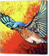 Bluebird In Flight Canvas Print