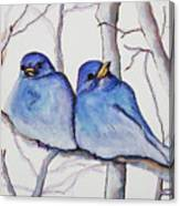 Bluebirds Canvas Print