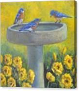 Bluebirds On Birdbath Canvas Print