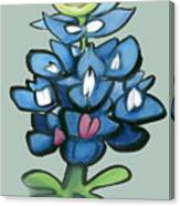 Bluebonnet Canvas Print