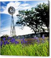 Bluebonnets With Windmill Canvas Print