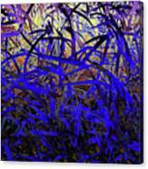 Bluegrass Canvas Print