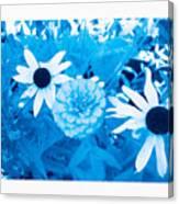 Blue's Art Canvas Print