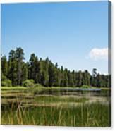 Bluff Lake Ca 3 Canvas Print
