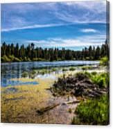 Bluff Lake  Canvas Print