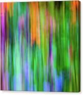 Blurred #1 Canvas Print