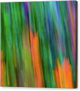 Blurred #2 Canvas Print