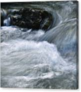 Blurred Detail Of A Mountain Stream Canvas Print