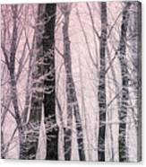 Blush Of Dawn Il Canvas Print