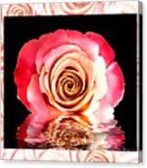 Blush Reflection Canvas Print