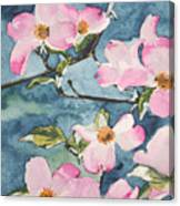 Blushing Prettily Canvas Print