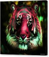 Blushing Tiger Canvas Print