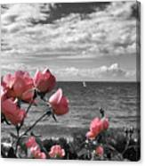 Blustery Summer's Day  Canvas Print