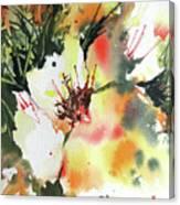 Bo Peep Canvas Print