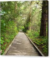 Boardwalk Along Hiking Trail At Fort Clatsop Canvas Print