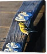 Boardwalk Inspector Canvas Print
