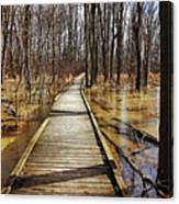 Boardwalk Over Golden Brown Iced Pond Canvas Print